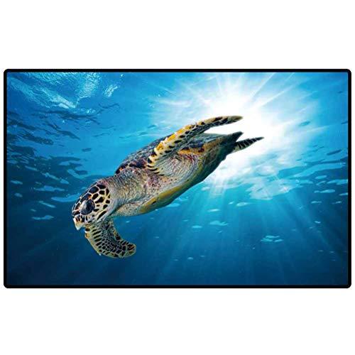 RenteriaDecor Indoor/Outdoor Area Rug Hawks Bill sea Turtle Dive Down into The deep Blue Ocean Against The Sunlight Floor Mat, Rug for Patio, Front Door