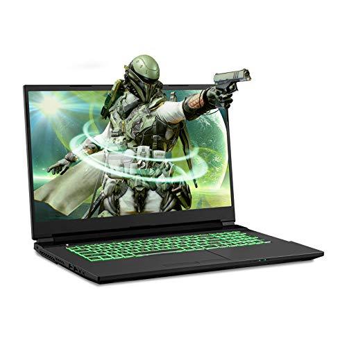 Sager NP7877DW 17.3-Inch Thin Bezel FHD 144Hz Gaming Laptop, Intel i7-10875H, RTX 2060 6GB, 16GB RAM, 500GB NVMe SSD, Windows 10