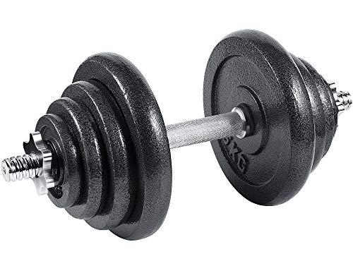 Arteesol Mancuernas Ajustables de Hierro 10 kg