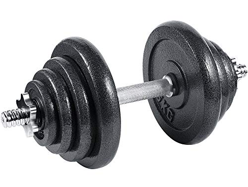 arteesol Hantel, Gusseisen Kurzhanteln Hanteln Hanteln Set 10kg 15kg 20kg 30kg für Professionelle Fitness-Leute (20kg-Single Hanteln)
