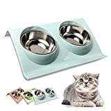 Skrtuan Cat Food Bowl 2 Stainless Steel Pet Dog Bowls, Pet Food and Water Bowls with Non-Skid, Tilted Cat Water Bowl No Spill for Feeding Cat Puppy Dogs Rabbit and Pets