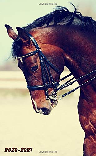 Download 2020-2021: Equestrian Two-Year Monthly Pocket Planner With Phone Book, Password Log And Notebook. Nifty 2 Year (24 Months)... 