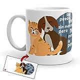 Kembilove Tazas de Mascotas – Taza de Café Divertidas con Mensaje Se Puede Vivir sin Mascotas, Pero no Merece la pena – Tazas de Desayuno de Animales – Tazas Originales de 350 ml