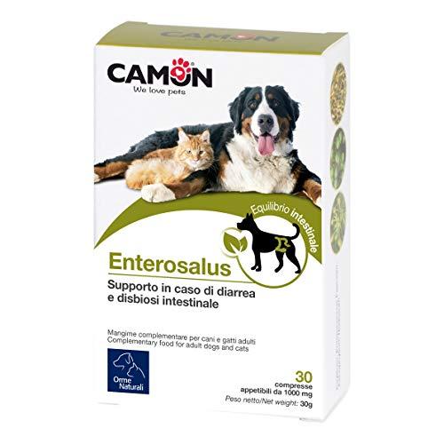 Camon Enterosalus aliment complémentaire pour problèmes intestinaux chien et chat. 30 comprimés