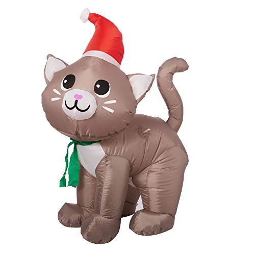 Very cute Christmas decor for your yard involving a cat