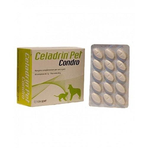 CELADRIN PET CONDRO 60CPR