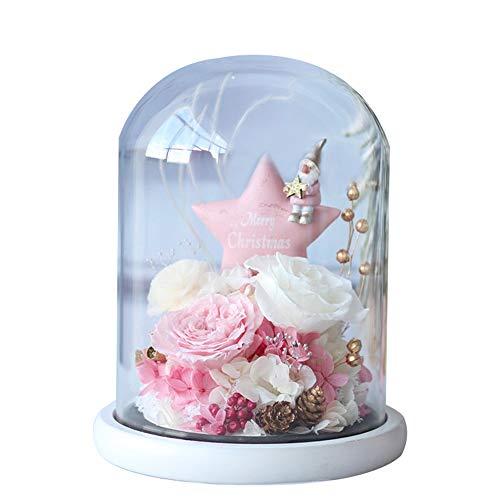 Cubierta de vidrio de flores preservadas, regalos navideños de estrellas de Navidad, regalos de flores preservadas para el día de San Valentín, adecuados para aniversario, día de San Valentín, cumpl