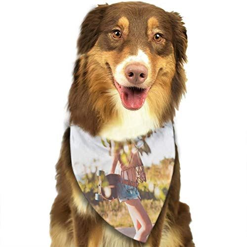 Generic Summer-Ride-Longboard-Girl_Free_Stock_Photos_picjumbo_HNCK5714-2210 x 1474 Hunde-Halstuch in leuchtenden Farben