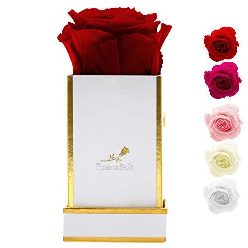 Rosenlieb Rosenbox mit Infinity Rosen (3 Jahre haltbar)   Echte konservierte Blumen   Flowerbox Inklusive Grußkarte (Square Bella Weiß, Rot)