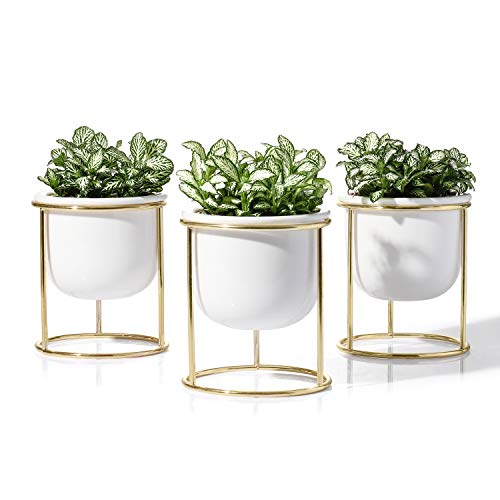 POTEY Ceramic Succulent Planter Pot - 3 Inch Mini Cactus Indoor Plants Carden Container Planting Metal Stand Decor Office with Drainage, 3PCS