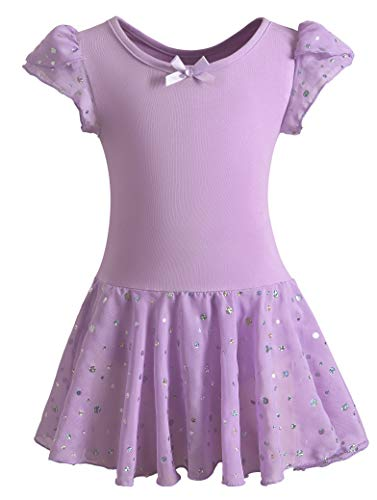 DANSHOW Girls Glitter Leotards for Ballet Dance Dress with Tutu Skirt Petal Sleeve(4-6years,Purple)