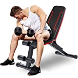 HOLATO Adjustable Weight Bench for Full Body Workout ,Foldable Workout Bench Home Gym Weightlifting and Strength Training,Multi-Purpose Sit up Bench Portable Exercise Bench (red)