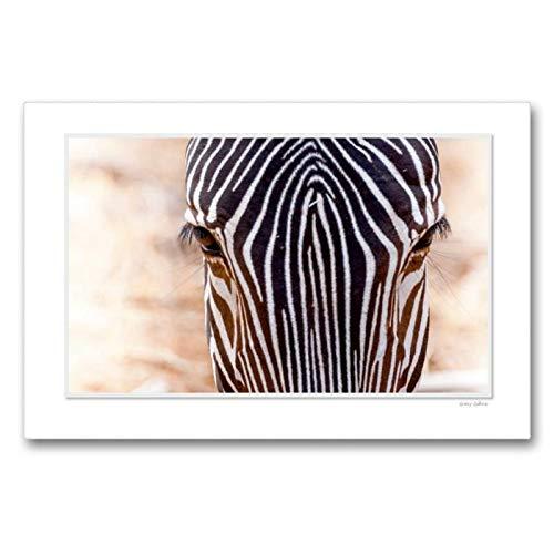 CALVENDO Lienzo de 90 cm x 60 cm, Horizontal, un Motivo del Calendario emocionante: los Ojos de los Animales. Cuadro de Pared en Lienzo, diseño de Animales
