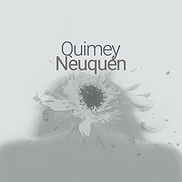 Quimey Neuquén