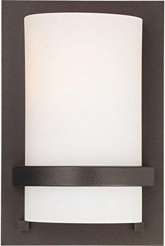 Minka Lavery Wall Sconce Lighting 342-172 Glass 1 Light 100 watt (10'H x 6'W) Damp Bath Vanity Fixture, Iron
