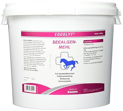 Equolyt Seealgenmehl, 1er Pack (1 x 4 kg)