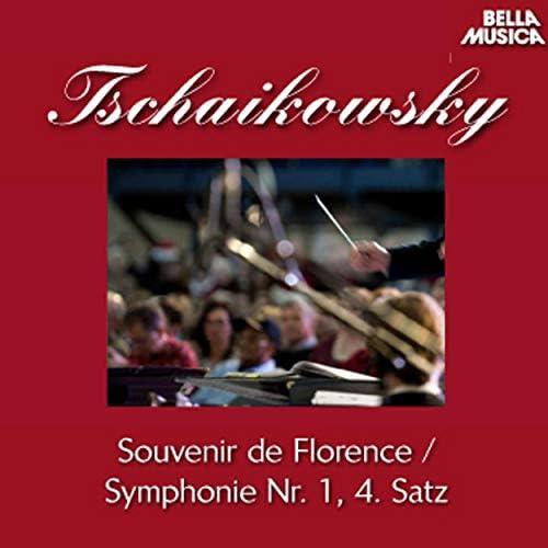 Kammerorchester Conrad von der Goltz, Conrad von der Goltz, Hans Kalafusz, Klaus von Wildermann, Slowakische Philharmonie & Bystrik Rezucha