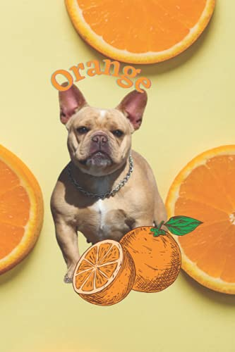 Orange; Super Cute Frenchie; Shorty Bull French Bulldog Notebook: A notepad perfect for creative writing, note taking, and more!