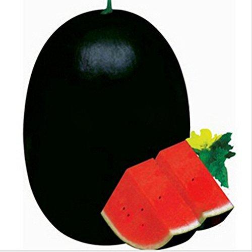 Vente chaude 50 pcs/paquet 11 types rares de graines de melon d'eau chinois choisir fruit délicieux melon d'eau semences bonsaïs 3