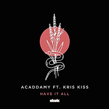 Have It All (Remixes)