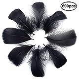 Totofy 600 Plumas Negro,Manualidades Natural Plumas de Ganso, para decoración del hogar,Disfraces Hats, Bodas y proyectos de Bricolaje.