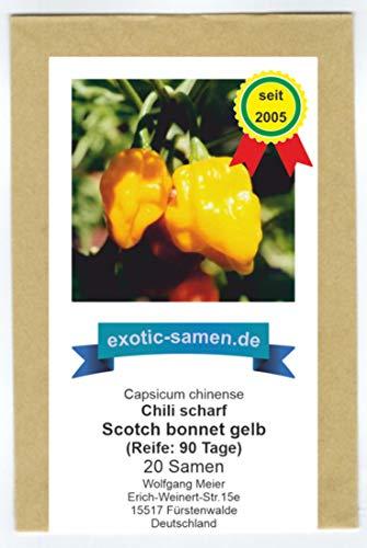 Seltene, sehr scharfe Chili-Sorte mit Aprikosenaroma - Scotch Bonnet gelb, yellow - 20 Samen