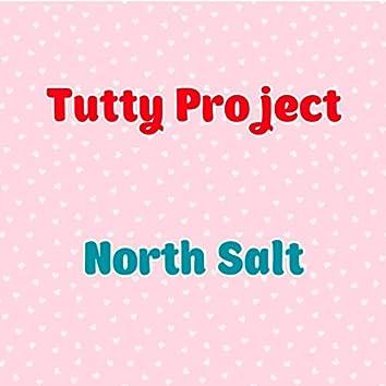 North Salt