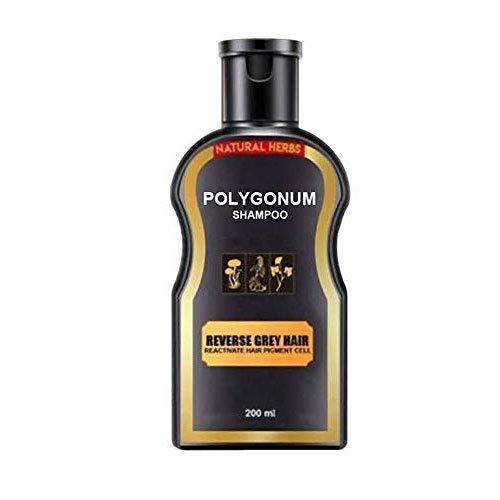 Polygonum Shampoo Grey Reverse,Natural Darkening Shampoo