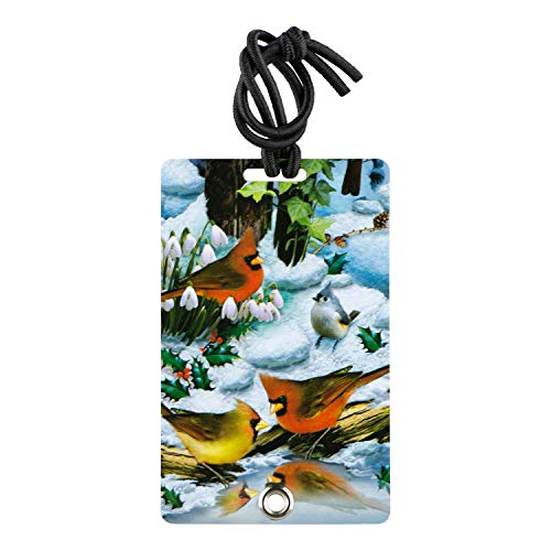 2 Pack Luggage Tags Cardinals Bird Handbag Tag For Suitcase Bag Accessories
