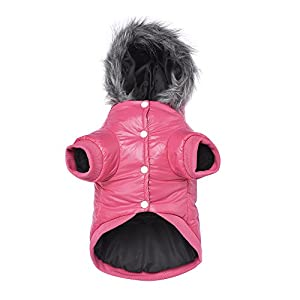LESYPET Dog Warm Winter Coat – Waterpoof Paded Warm Hoodie Jacket for Puppy Small Dogs