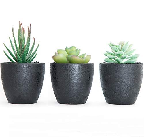 Künstliche Sukkulenten Kaktus Deko Pflanzen - Kunstblumen im Topf schwarz - 3-er Set Kunstpflanzen mini klein modern schwarzer Topf - Tisch-deko Küche Badezimmer Wohnzimmer Büro Schlafzimmer Balkon