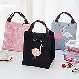 AXXMD Leche del alimento del Aislamiento Bolsas de Almacenamiento Impermeable Oxford Bolsa de Comida Infantil del Saco de los niños del calientaplatos Bolsa térmica (Color : Gray Flamingo)