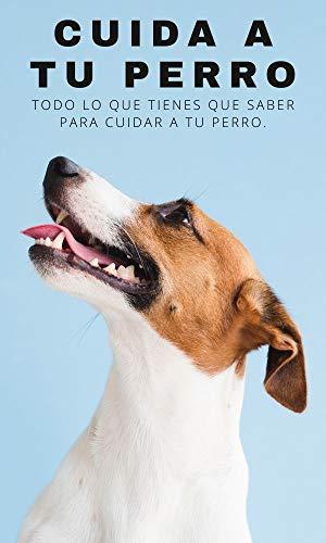 CUIDA A TU PERRO: Todo lo que tienes que saber para cuidar a tu perro