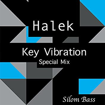 Key Vibration (Special Mix)