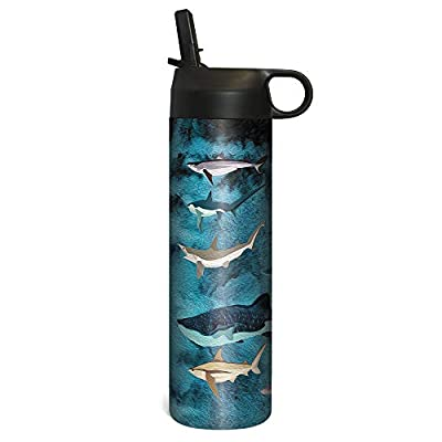 Tree-Free Greetings SP68586 Sportiva Stainless Steel Tumbler Double-Walled and Vacuum Insulated Cup with Straw 17 Ounce Shark Collage