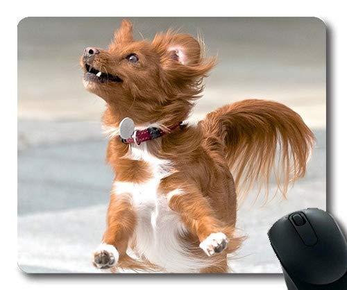 Individuelle Mouse Pad, Ein Haustier - Garten - Mousepad, Action - Haustier Hund spaß für Hunde Spielen - Mousepad