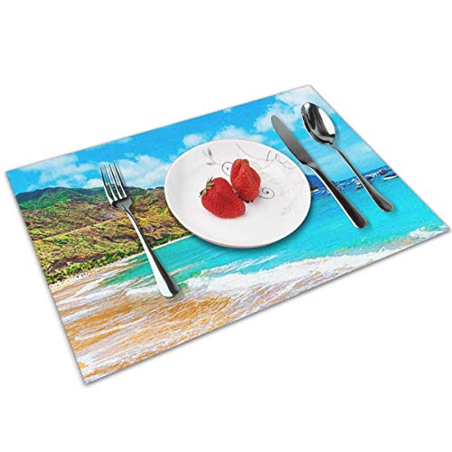 QCFW Manteles Individuales Playa de Tenerife Mantel Individual Antideslizante Resistente Al Calor Salvamanteles Juego de 4 para La Mesa de Comedor de Cocina