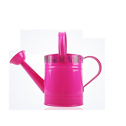 Theepot Tin-Plated Bloem Pot Douche Pot Watering Ketel A