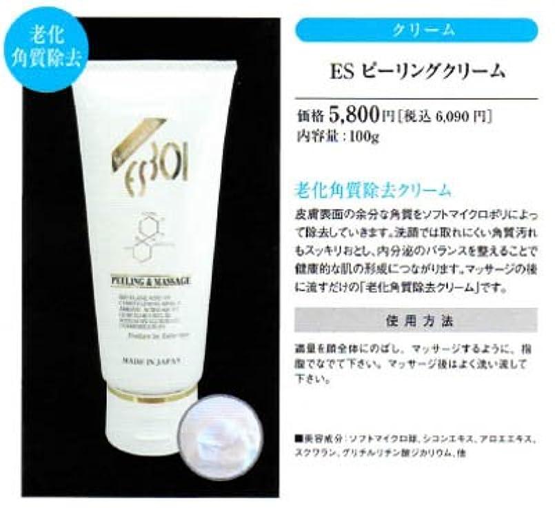 コーチ安西船外【R-Cell(リセル)】 リセル ESピーリングクリーム 100g