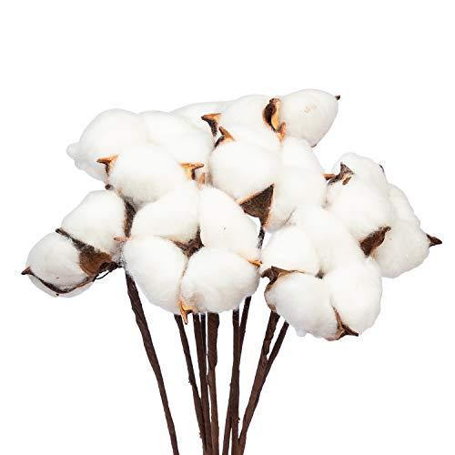 KI Store Natural Cotton Boll Picks 1 Cottons Balls per Stem Set of 30 Rustic Floral Woodland Farmhouse Themed Crafts Decorative Ornaments Assortment Bulk Christmas Tree Wreath Garland