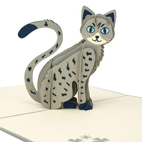LIMAH® Pop Up 3D Katze,Geburtstagskarte, Glückwunschkarte, Freundschaftskarte, Geschenkkarte, Überraschungskarte mit einer großen grauen Katze mit großen blauen Augen