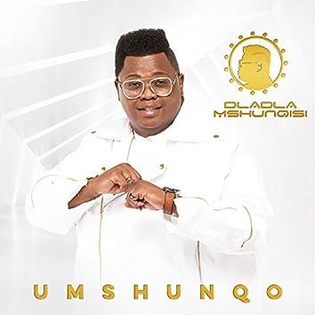 Umshunqo