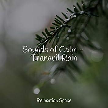 Sounds of Calm - Tranquil Rain