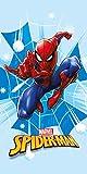 Faro Tekstylia Telo Mare in Microfibra Spiderman 4, Multicolore, 70X140