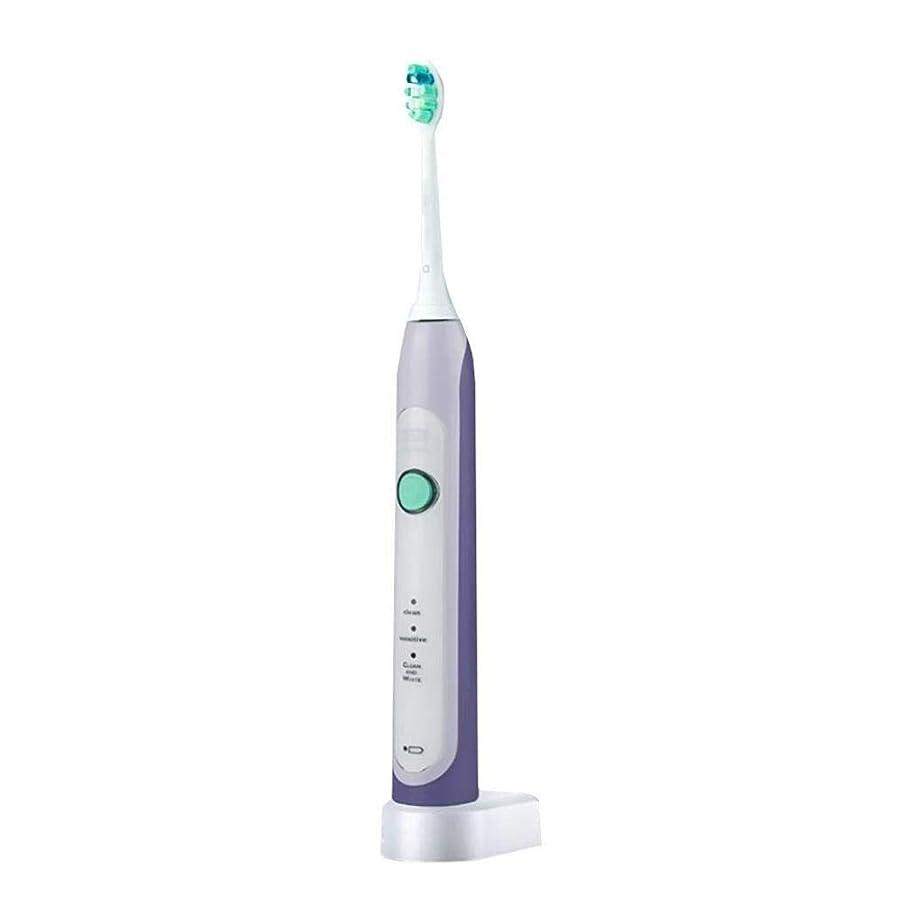 付属品右議会電動歯ブラシ、高感度、歯茎ケアモデル、1本の歯ブラシヘッド付き圧力センサー