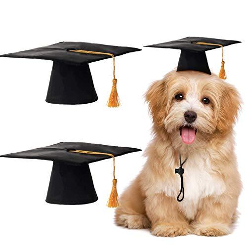 Norme 2 Stücke Haustier Absolventenhut Kleine Hund Absolventenhut mit Gelben Quaste Haustier Abschluss Kostüm für Hunde Katzen Urlaub Kostüm Zubehör