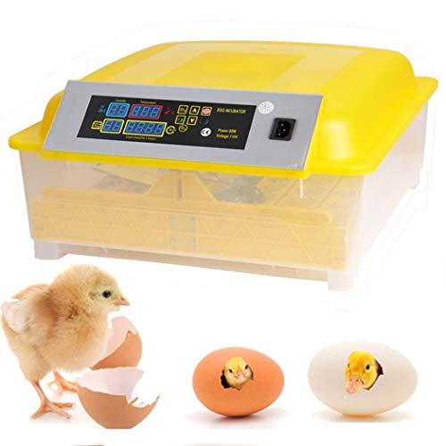 Incubadoras 56 Huevos Completamente Automáticos Incubadora Inteligente Incubadora Criadora de Motores Pollos con Pantalla LED de Temperatura y Control de Humedad (48 Huevos)