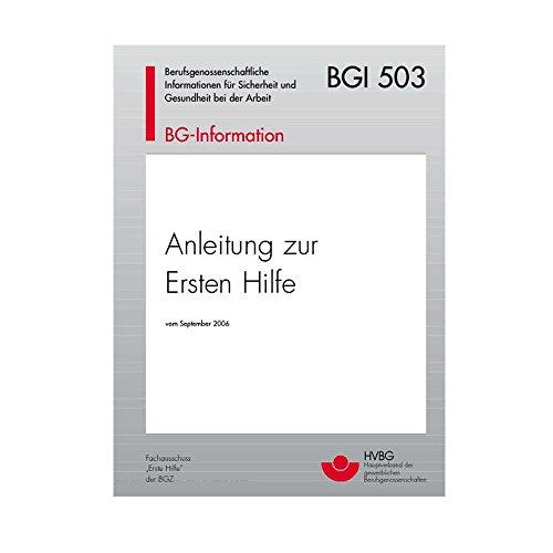 Holthaus Medical Broschüre -Anleitung zur Ersten Hilfe bei Unfällen- nach BGI 503, für Betriebe