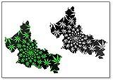 Imán para nevera con diseño de mapa de San Luis Potosi con hojas de cannabis verde y negro