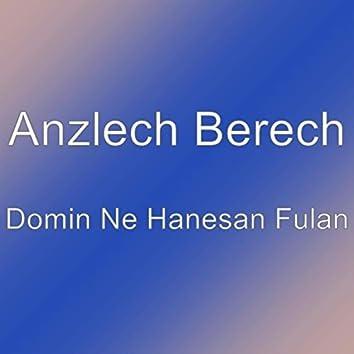 Domin Ne Hanesan Fulan